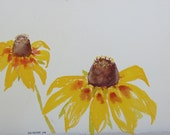 Wildflower painting, Lazy Susans, original watercolor art by Nan Henke 11x14