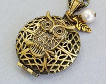 Owl Locket Necklace, Owl Necklace, Owl Jewelry, Locket Necklaces, Owl Lovers, Owl Pendant Necklace, Round Photo Locket Necklace, Unique