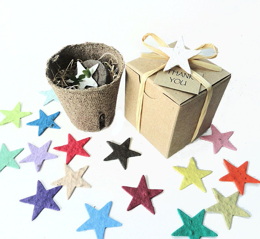 12 Plantable Star Shaped Kids Birthday Party Favors Unique