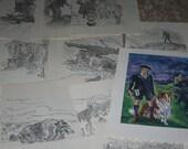 Lassie Come Home, Illustrations