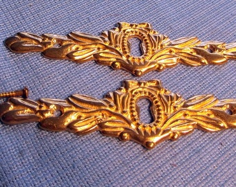 Pair of Large Cast Brass Escutcheons