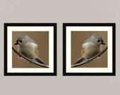Titmouse set 3 -  gift idea Nature beauty green Feathered friend birder watching Love bird wall decor Birder back yard friends wall Fine Art