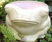 Frog, planter, toad, plant, garden, house plant, on sale, green