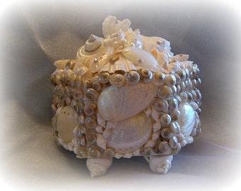 Pearly Seashell Treasure Box