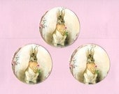 Stickers - Rabbit Stickers - Vintage Style