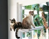 In the Pink - Curious Cats Window Perch