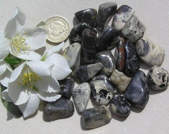 12 Silver Leaf Jasper Crystal Tumblestones, Crystal Collection, Gray Crystals, Chakra Crystals, Reiki, Meditation Stone, Black Crystals