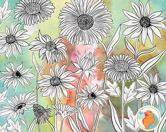 Daisy Clip Art, Cone Flower PhotoShop Brush, Daisies Line Art Stamps for Card making, Wedding Invitations, PNG Floral Line Art