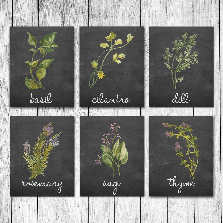 Kitchen Art Herbs: Watercolor Herb Chalkboard Kitchen Decor Wall Art Print Set Of