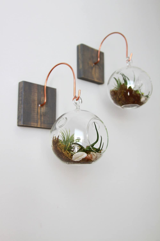 Bois et cuivre monter avec terrarium unique wall decor for Decor traduction