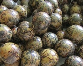Bombona Beads, Markdown, Pambil Beads, Marbled Forest Green Beads, Organic Beads, Natural Beads, Vegetable Ivory Beads, EcoBeads