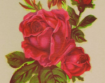 1 Red Rose Victorian Design Vintage Decals Transfer Floral Shabby Chic Furniture Restoration Upcycle