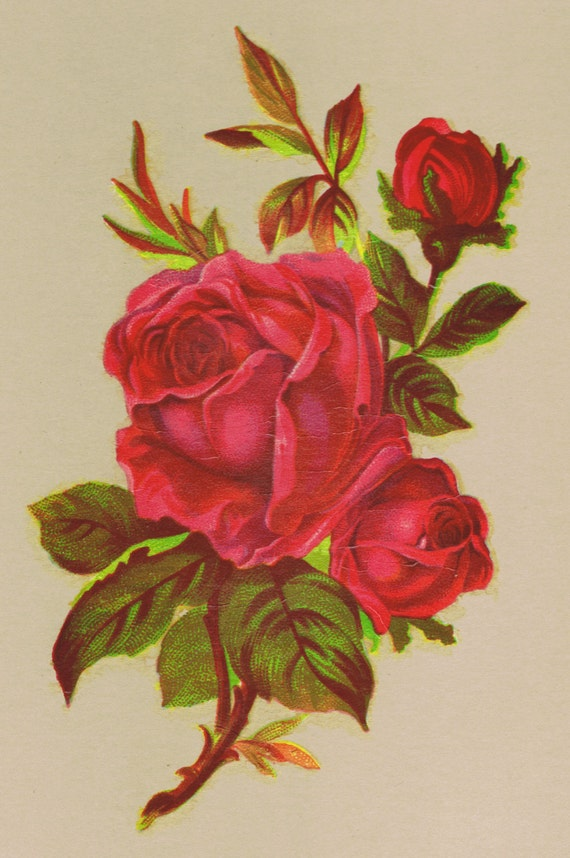 1 Red Rose Victorian Design Vintage Decals Transfer Floral Shabby Chic  Furniture Restoration Upcycle From Decorativedecals On Etsy Studio