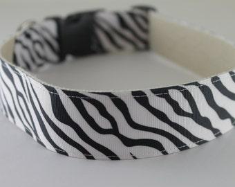 Zebra Stripe hemp dog collar - extra large