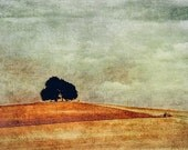 Solitary Tree - Grunged Photographic Print by Doug Armand on Etsy - DAIP0087