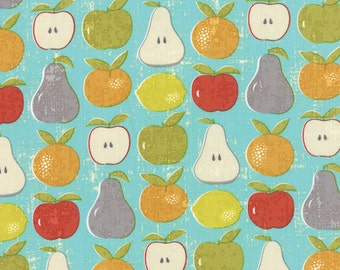 Garden Project - Mixed Fruit in Sky by Tim & Beck for Moda Fabrics
