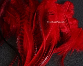 Bulk Red Craft Feathers 50 Rooster Hen Chicken Pheasant Real Bird Feathers for Crafts Cherry Red Feathers Wholesale