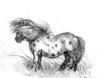 Heathcliffe - Digital Print of Original Monoprint - Horse