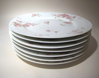 7 Haviland Plates Made in Limoges France