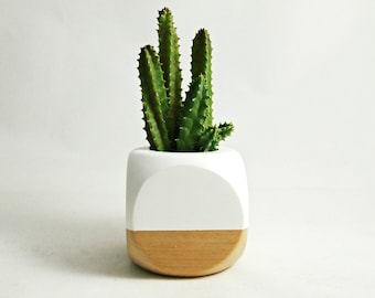 Mini Geometric Planter // White + Wood (Plant Not Included)