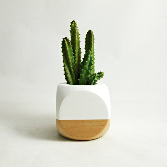 Mini geometric planter white wood plant not included for Wooden cactus planter