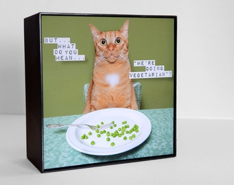 cat photography,photo block,5x5,vegetarian, funny, silly, framed,art for your wall or table top,avocado green,orange cat