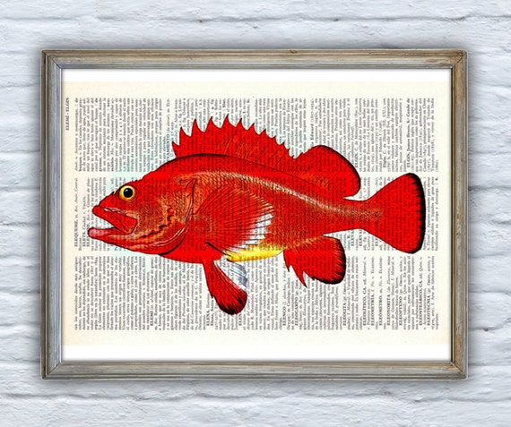 Spring Sale Art Print Hot orange rock fish Print Vintage Dictionary sheet Bech house decor Fish poster print giclee monkfish BPSL064