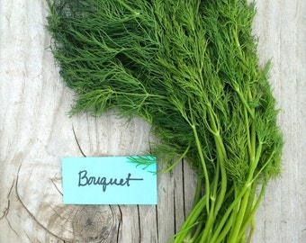 Bouquet Dill Culinary Herb Seeds Organic Heirloom Great for Pickles and Fresh Use