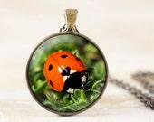 Ladybug Necklace - Red Ladybug Pendant, Ladybird Necklace, Garden Bug Pendant, Garden Jewelry, Ladybird Jewelry, Bronze Ladybug Jewelry