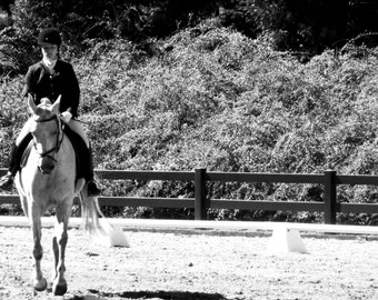 Dressage Test Black and White Picture Greeting Card