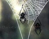 Halloween Black Widow Spider - Lady Death - Stainless Steel Earring Set