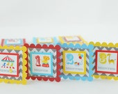 Circus 12 Month Photo Banner, First Year Photo Banner, First Year Banner, Circus Theme, Turquoise, Yellow and Red, Gray Chevron, c-1135
