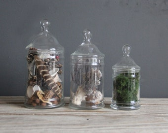 Medium Glass Apothecary Jar
