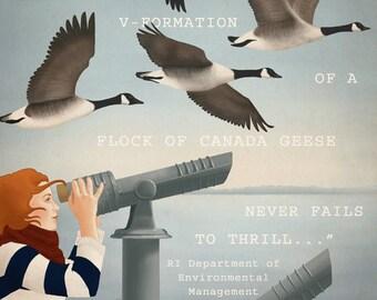 Art Print, 8x10, Canada Goose Illustration, Bird Drawing, Animal Wall Art