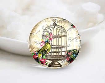 10mm 12mm 14mm 16mm 18mm 20mm 25mm 30mm Handmade Round Photo Glass Cabs Cover-Cage Bird (P1965)