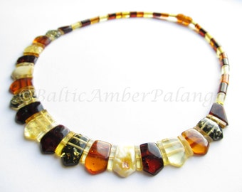 Baltic Amber Multicolor Choker