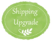 Shipping Upgrade to Express Mail