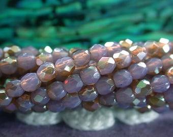 2 Strands, 100 ~ 2mm Fire Polished Beads, Czech Glass Fire Polished Beads, Faceted Glass Beads, Milky Amethyst Celsian Beads  CZ-495