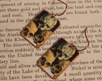 Skull earrings Cezzane earrings Paul Cezzane mixed media jewelry
