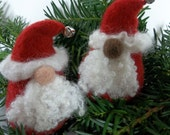 Needle Felting Kit - Santa Kit - Winter Gnome Kit - Beginner's Felting Kit - Holiday Kit
