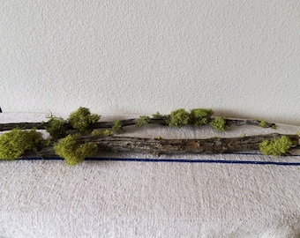 SET of  2 long branches with apple green moss // Woodland Lichen Moss