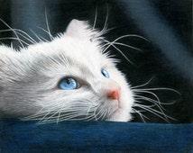 Blue-Eyed Kitten Drawing - Large Framed Giclee Print