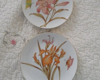 VINTAGE pretty  ceramic flower plates two  one with wild iris and one with lillys wall decor.