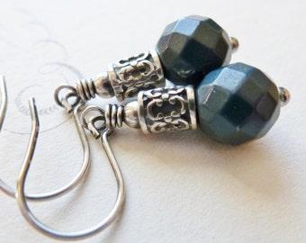 Slate Blue Snakeskin Agate Earrings / Sterling Silver Dangle Earrings / SimplyJoli / Federal Blue