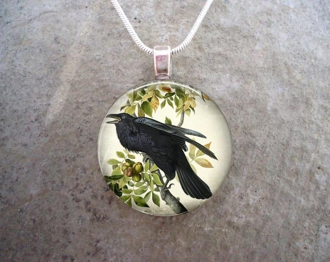 Crow Jewelry - Bird Jewellery - Glass Pendant Necklace - Raven 7