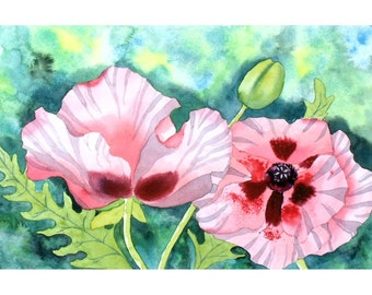 Original Watercolour Flower Painting, Peach Pink Poppies in Botanical Style