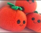 Handmade Perry the Pumpkin Plush