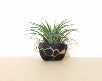 Black Gold Geo Planter Petite Small Perfect Air Plant Container MADE TO ORDER