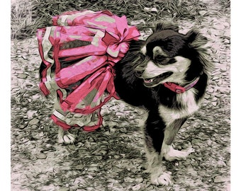 Black and Tan Long Hair Chihuahua in Pink TuTu 8x8, 10x10, 12x12 from original - Little Pink TuTu Korpita ebsq