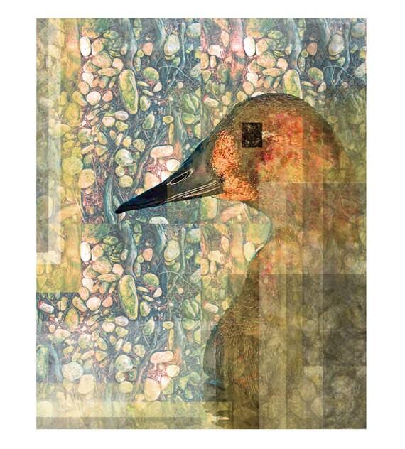 Art Print, Bird Print,  Vintage Style, Duck Portrait on Pattern, Illustration, Vintage Style, Bird Art, 8x10in